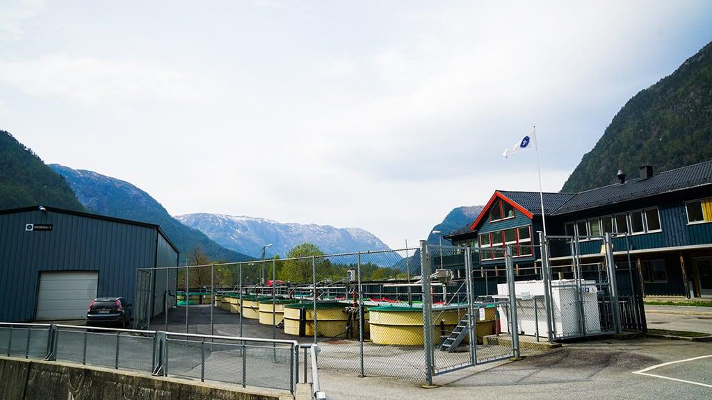 Havforskningsinstituttet vel Østerbø som leverandør